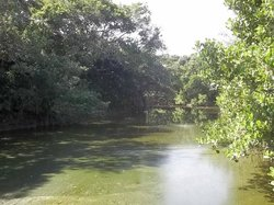 Ecological Reserve Taua