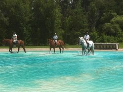 Cedar Run Horse Park