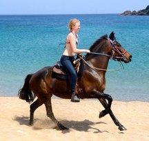 Mykonos Horseland