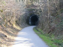 Plym Valley Cycle Trail