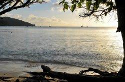 Spiaggia  Anse a la Mouche