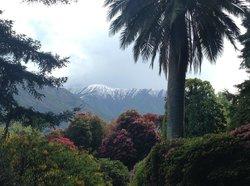 View from Vila La Carlotta