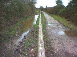 Hayling Billy Trail