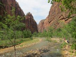 Zion National Park Rides