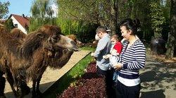 Arche Noah Zoo Braunschweig-Stockheim