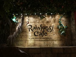 ‪Rainforest Cafe‬
