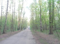 Izmailovo Natural and Historical Park