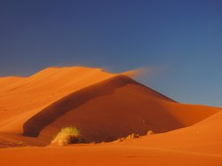 Discover Namibia Private Day Tours and Safaris