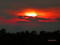 Sunset over mangrove swamp