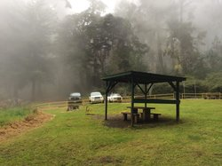Polipoli Springs State Recreational Area
