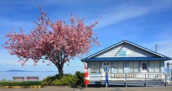 Qualicum Beach Visitor Information Centre