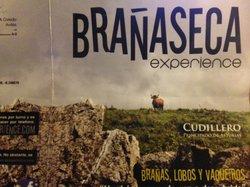 BranasecaExperiencie