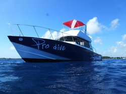 Pro Dive Mauritius Ltd