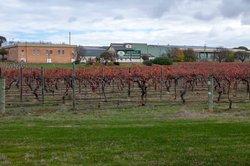 Seppelt Winery