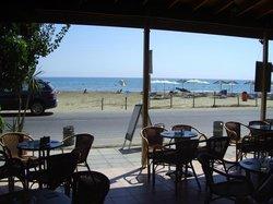 The Seagull Larnaca