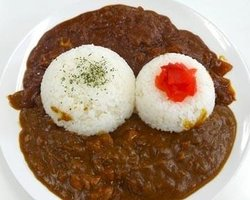 Shinsai Kiko Shonan Curry Don Ryuan