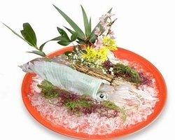 Japanese Cuisine Hamayuu