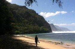 Kauai Island Shuttle