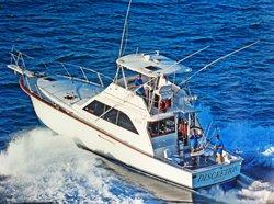 Discretion Sportfishing