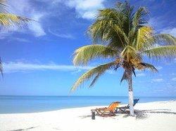 Bahia de Tortugas