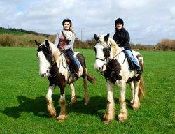 Drumcliffe Equestrian
