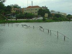 Lagoa Do Violao