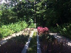 Recife Botanic Garden