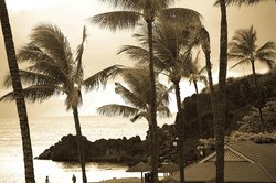 a little vintage Hawaii