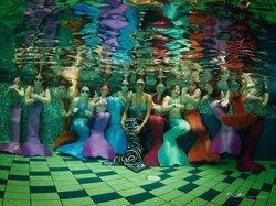 Meerjungfrauenclub Serenia