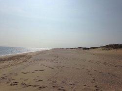 Katama Beach