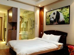 Chengdu Panda Apartment