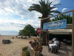 Kalogria Restaurant