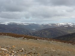Braemar Highland Safaris