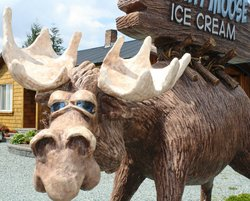Mighty Moose Ice Cream