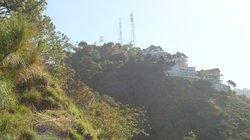 Birds View Kasauli