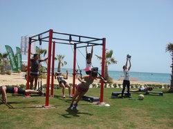 Lax Gym