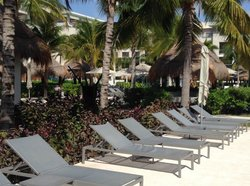 loungers by main pool