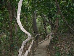 Chocoyero-El Brujo Natural Reserve