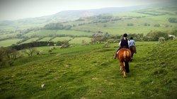 Boltby Pony Trekking
