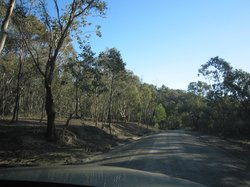 woolshed drive