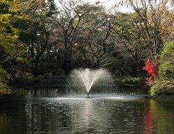 Wadabori Park