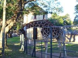 Zoo Villa Dolores