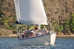 Joy Ride Sailing Tours