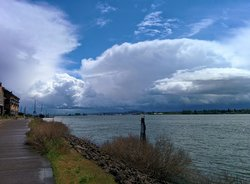 Waterfront Renaissance Trail