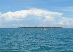 Suyac Island Mangrove Eco-Park