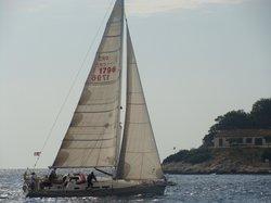 Bare Hvar Sailing Tours