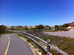 Cape Cod Provincelands Trail