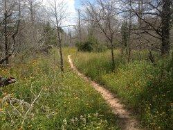 Rocky Hill Ranch