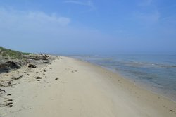 Savage Neck Dunes Dunes Natural Area Preserve