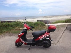 Your Moped Operandi